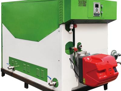 SZS系列燃气(油)蒸汽发生器-600kg(绿)