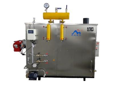 WNS系列燃油(气)蒸汽发生器 卧式