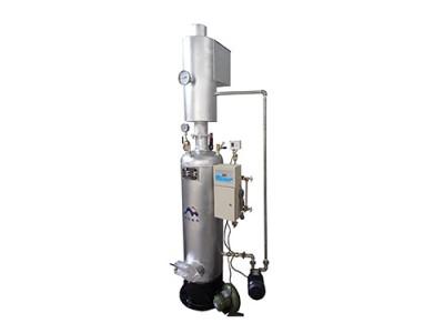 LSG燃煤(柴)蒸汽发生器