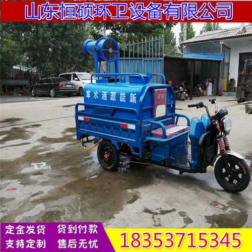 小型电动洒水车 电动雾炮洒水车 电动三轮消毒除尘清洗车