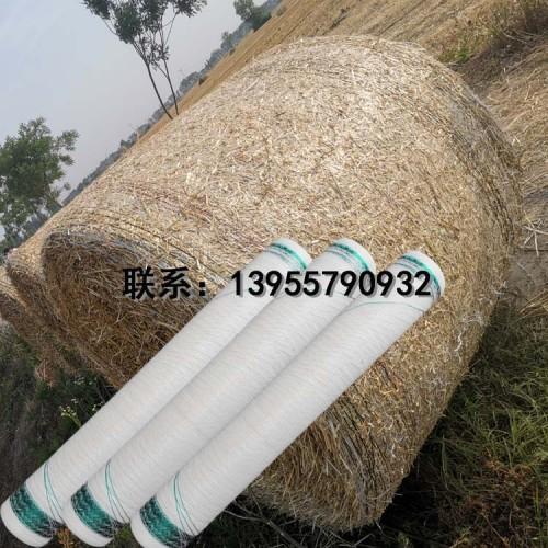 打捆网塑料打捆网PP包装网捆扎网捆草网塑料丝网