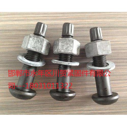 10.9S钢结构扭剪螺栓螺丝直销
