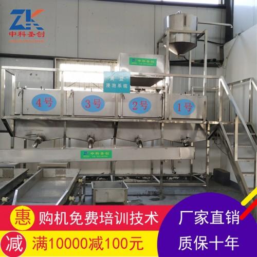 豆制品加工厂用自动泡豆系统 黄豆浸泡系统自动清洗大豆