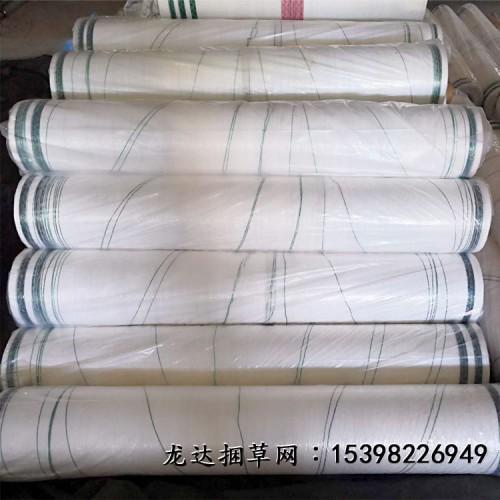 安徽捆草网 小麦秸秆打捆网 打捆机塑料网