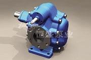 浙江齿轮泵安装「恒盛泵业」厂家直供/质量可靠