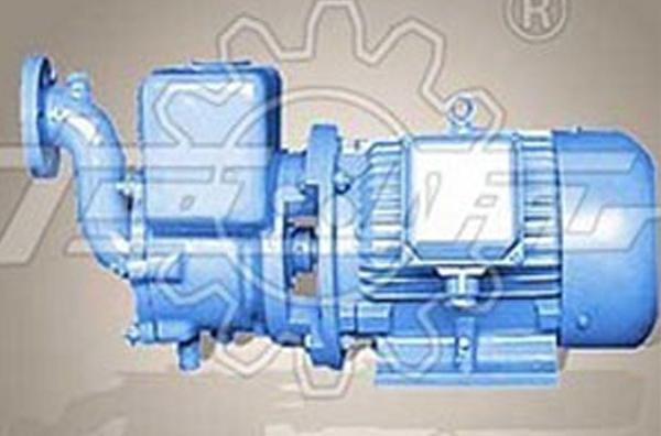 河南船用泵供应「恒盛泵业」售后完善/实力雄厚