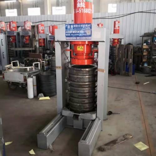 疹籽榨油机厂家  全自动疹籽油榨油机  疹籽商用榨油机