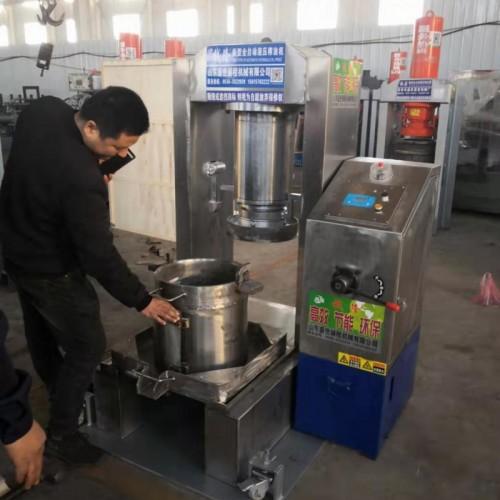 棕櫊油榨油机  商用棕櫊油榨油机   棕櫊油榨油机厂家