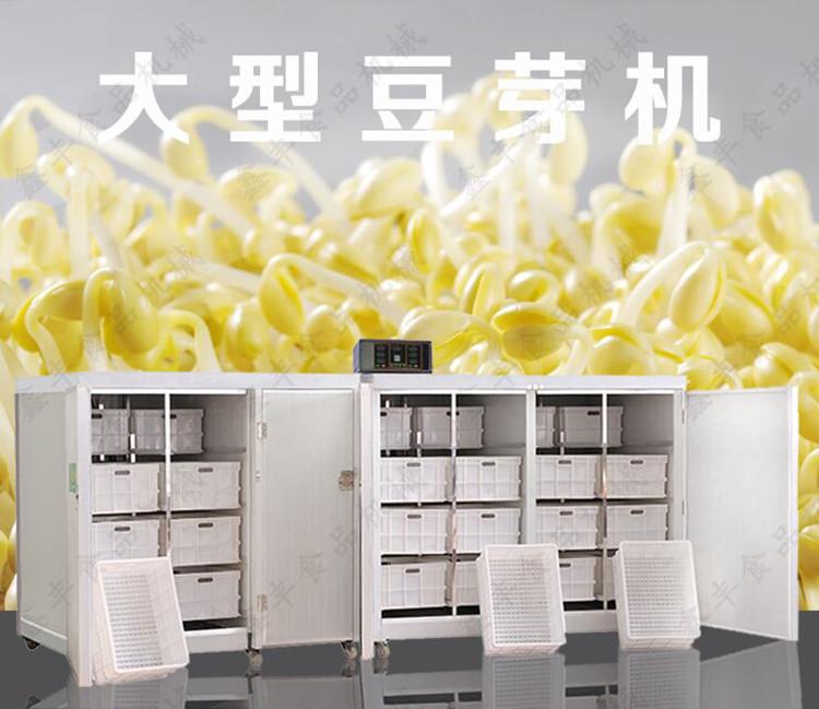 临沂全自动豆芽机价钱 智能豆芽机生产技术 鑫丰无公害豆芽机