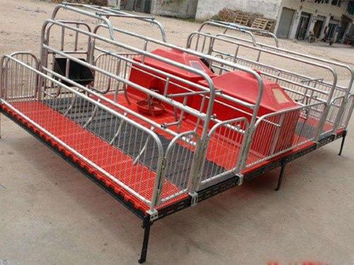 青海猪用产床供应商/万晟畜牧设备质优价廉