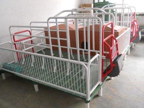 贵州猪用产床供应商/沧州万晟畜牧设备有限公司