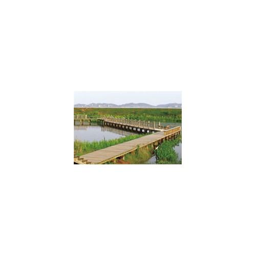 山西炭化木建筑厂家/泰昌环保/直营各式炭化木设施