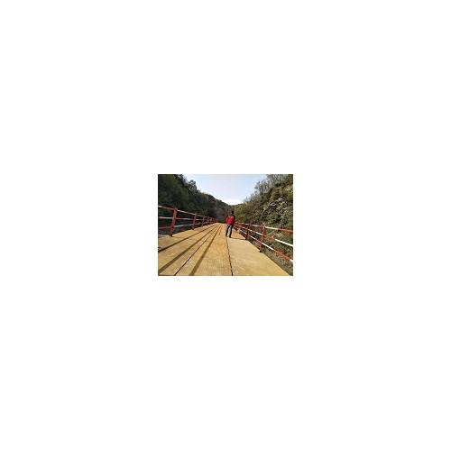 湖南贝雷桥生产「沧顺路桥工程」售后完善/厂家定制