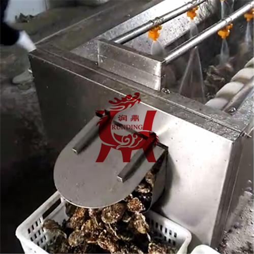 芋头毛辊清洗机 贝壳毛辊清洗机 土豆清洗去皮机 海产品清洗机