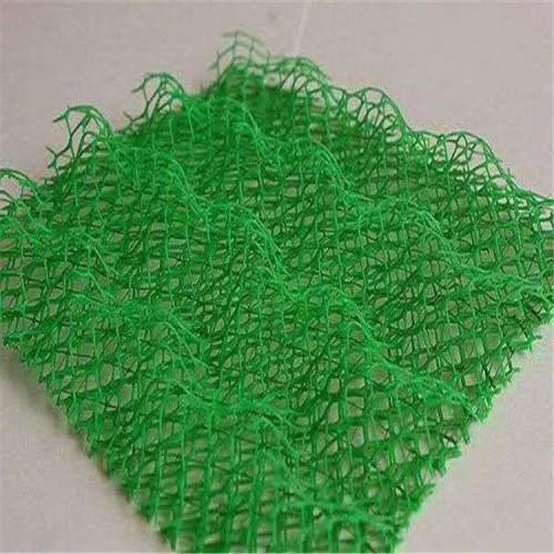 三维植被网厂家 泰安路德 EM5三维土工网垫生产基地