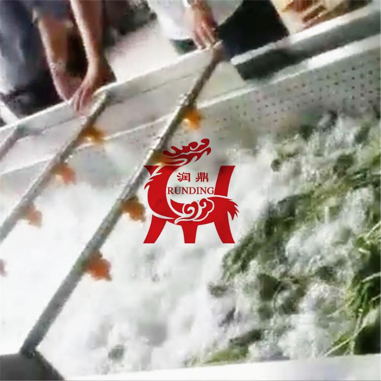 气泡式喷淋洗菜机 黄豆芽蘑菇香菇清洗机 洗菜加工设备 洗菜机