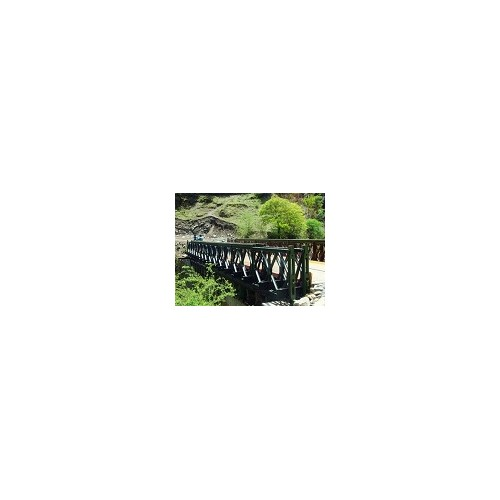 福建贝雷桥租赁「沧顺路桥工程」服务到位-质量可靠