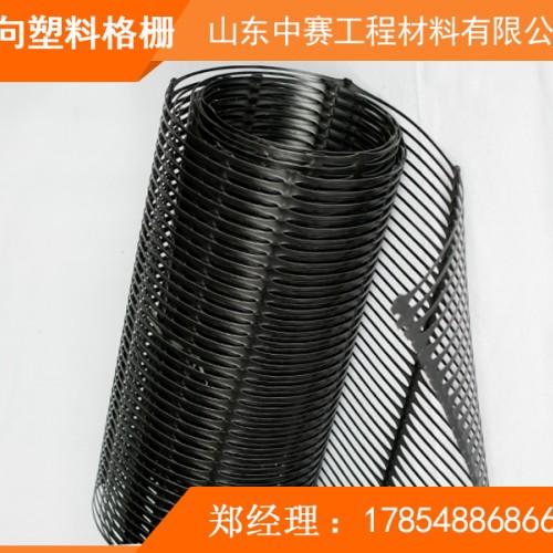 塑料土工格栅 双向塑料土工格栅
