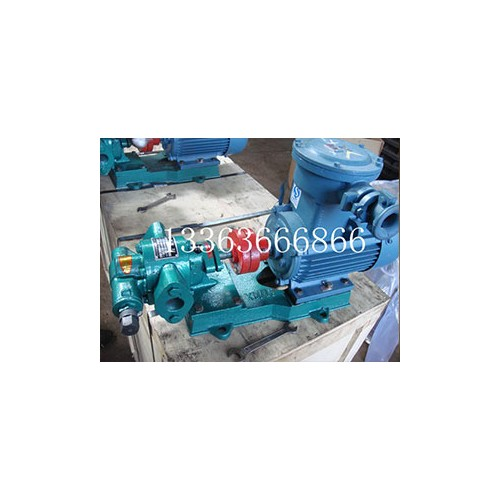 浙江齿轮泵订做厂家/亚兴工业泵阀品质保障
