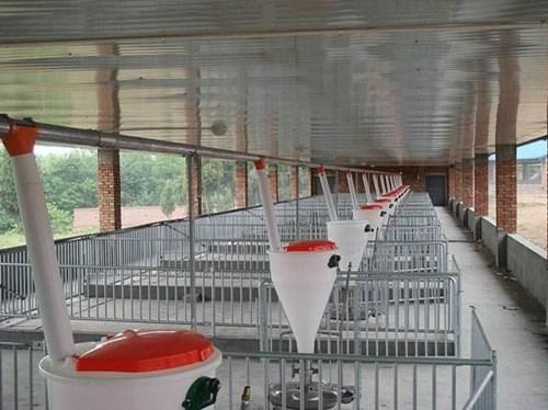 山东刮粪机现货供应/万晟畜牧设备有限公司质量可靠