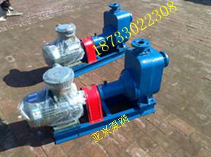 圆弧齿轮泵现货/亚兴工业泵阀公司品质保障
