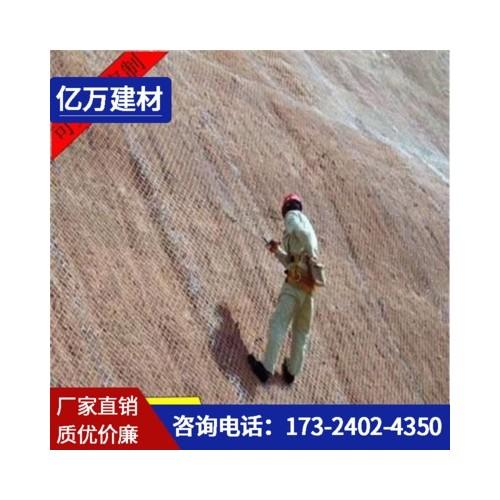 厂家直销公路山体滑坡防护网 柔性环形边坡防护网建筑防护围网
