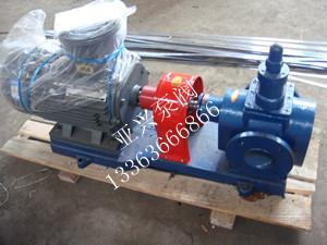河北圆弧齿轮泵定做厂家/亚兴泵阀公司品质保障