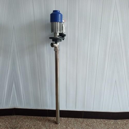 手提式电动抽油泵