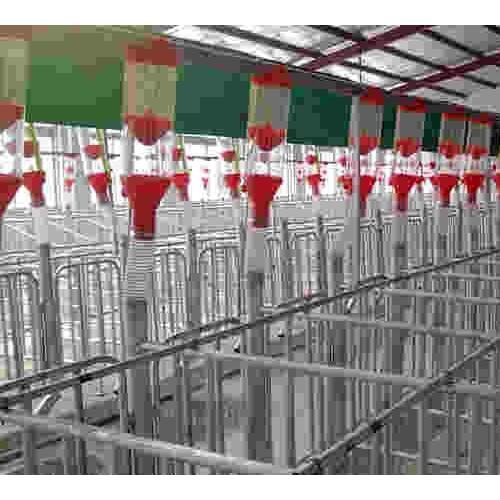 吉林自动化养猪设备生产加工|开元支持定制价格优惠