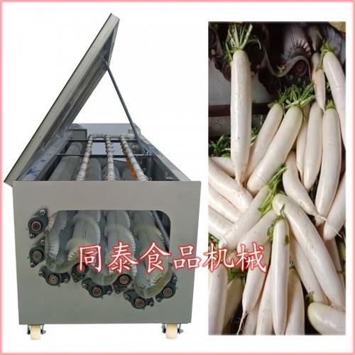 白萝卜清洗机 洗萝卜专业设备