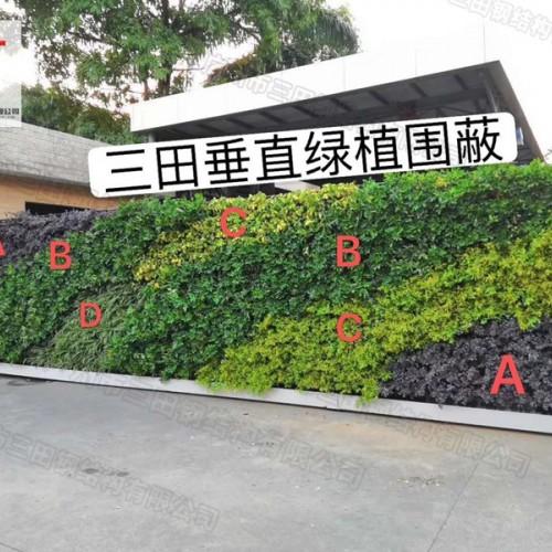 锦上添花!绿植围挡为精致城市添彩!