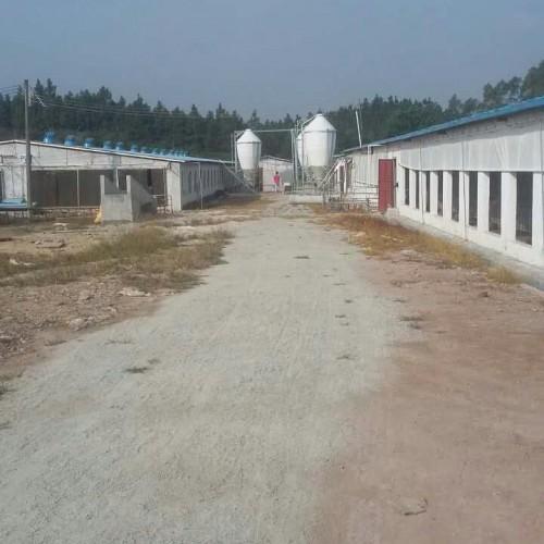 海南现代化养猪设备定制加工|开元畜牧规格齐全价格从优