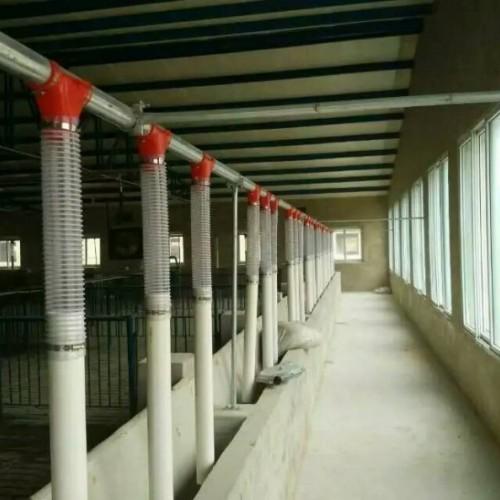 云南自动化养猪设备定制加工_开元畜牧多规格可选量大从优