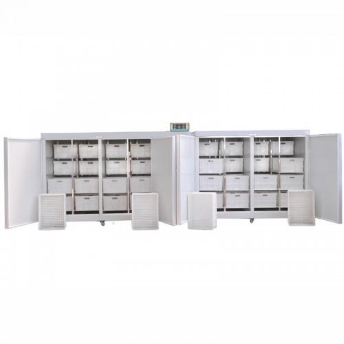 大型豆芽机出售 64芽盒豆芽机