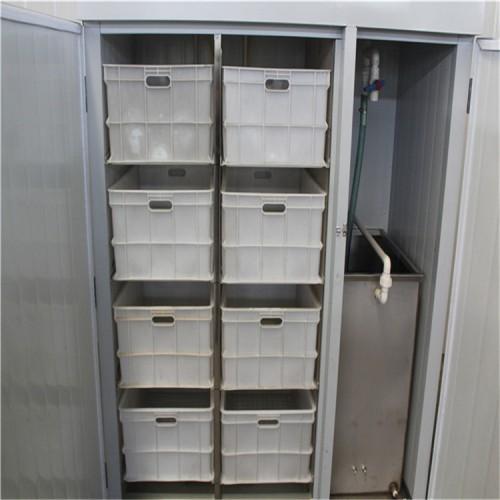 河南豆芽机价格 微电脑控制豆芽机 芽苗菜机规格