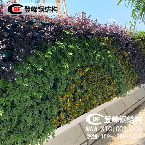 市政披挂式绿化围墙