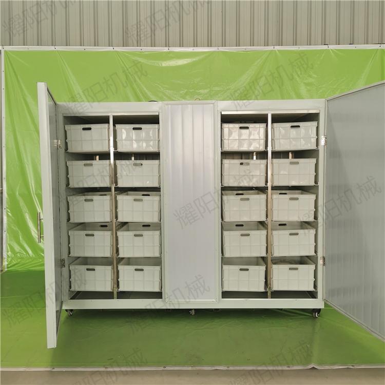 大型豆芽机出售 可定制机型