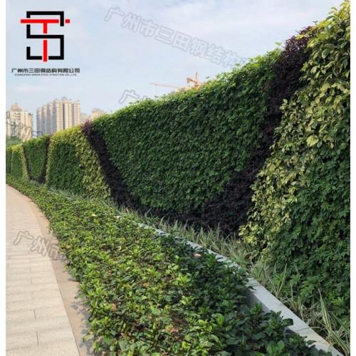 市政绿植围挡美出新高度