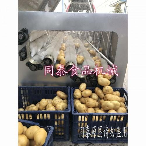 不锈钢土豆清洗机 毛刷洗土豆机