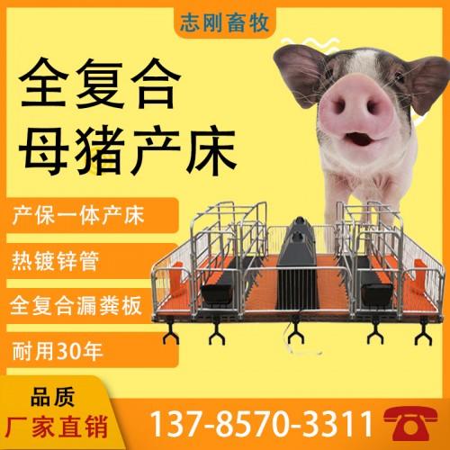 推荐母猪产床单体双体产床分娩床定位栏产保床复合板畜牧养殖器械