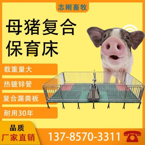 热卖养殖场设备母猪产床定位栏仔猪保育产保一体热度锌材质限位栏