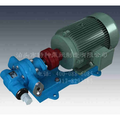 安徽齿轮泵-泊头特种泵-KCB-T系列铜齿轮泵(防爆齿轮泵)