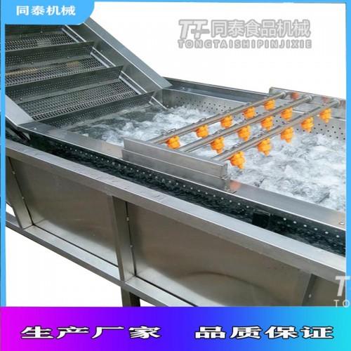 番茄清洗机 翻浪式气泡果蔬清洗机