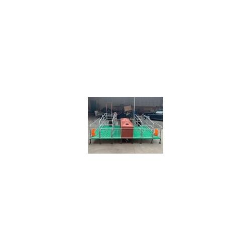 江西母猪产床价格「志航机械模具」双体/铸铁母猪产床诚信商家