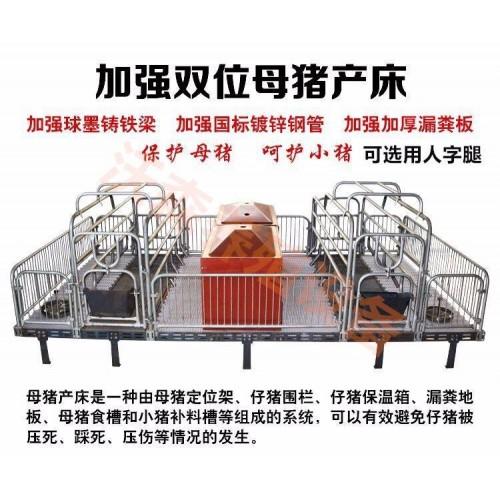 复合保育床双体母猪产床河北