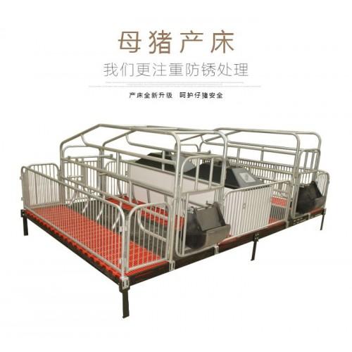 供应母猪产保一体分娩设备产床保育床河北