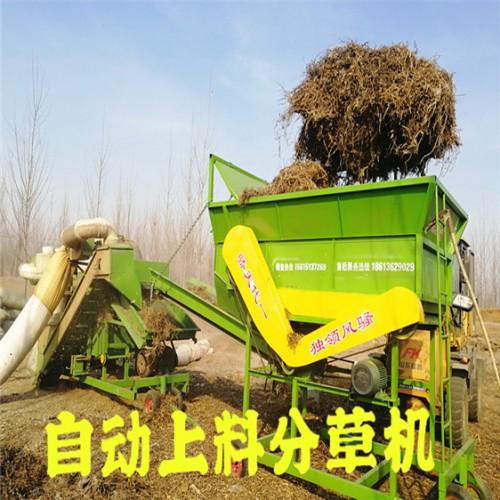 山东勇杰分草机 全自动上料分草设备 无需人工 可接除膜机