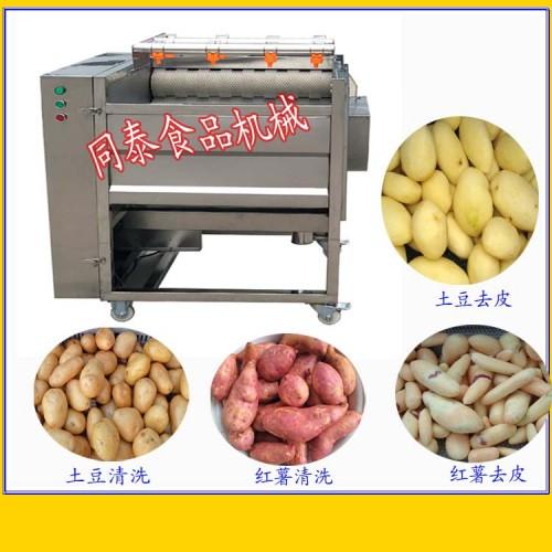 同泰牌电动不锈钢毛刷清洗去皮机土豆水洗机洗红薯机器