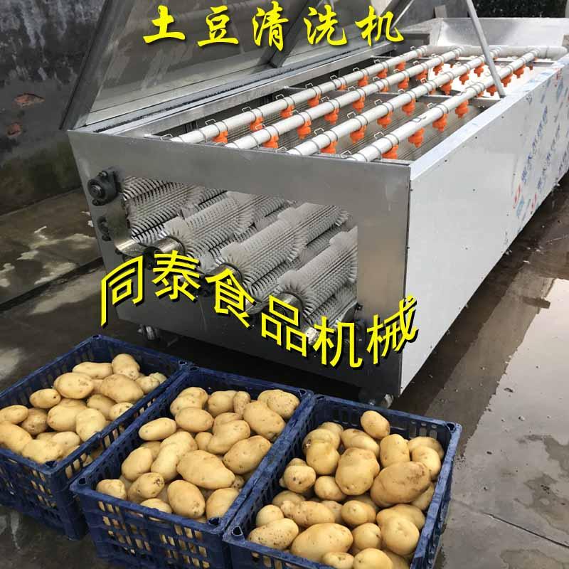 马铃薯毛辊清洗机 果蔬毛辊清洗机