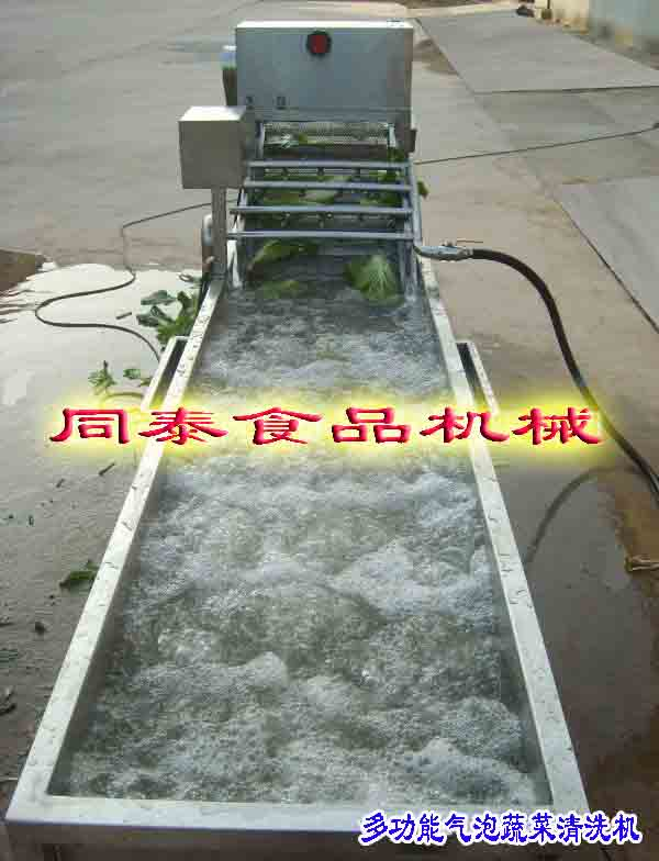 全自动多功能果蔬气泡清洗机 气泡清洗机厂家